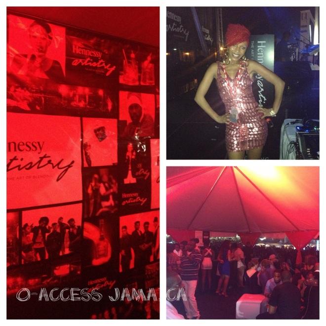 The Host of  Hennessy Artistry Diva Nikki Z rocked  her dress.