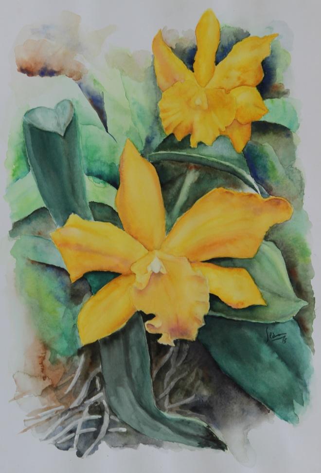 Yellow Cataleya by Sean Henry