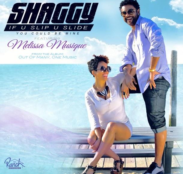 Shaggy  Slide